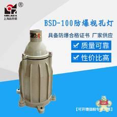 BSD-100