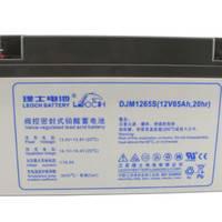 LEOCH理士蓄电池DJM1265 储电铅酸电池12V65AH 消防应急灯直流屏