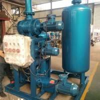 水环式真空泵 水环罗茨真空泵机组厂家直销