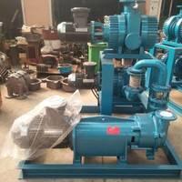 罗茨真空泵 JZJ2B罗茨水环真空泵机组厂家定制