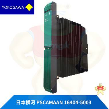 PSCAMAAN 16404-5003 现货库存