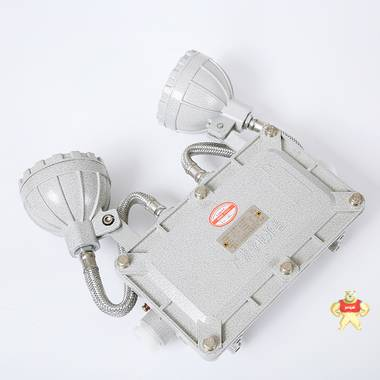 金阳王 消防应急照明灯具(防爆) JYW-BXW6229   可集中控制  证书齐全