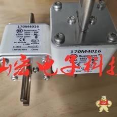 170M5138 170M8330-GE 170M3609