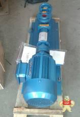 G20-1铸铁螺杆泵