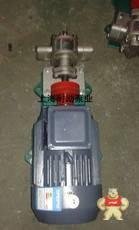 KCB-55 不锈钢齿轮泵