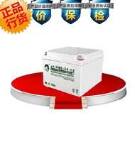 劲博JP-HSE-24-12铅酸蓄电池12V24AH蓄电池 原装 换购价