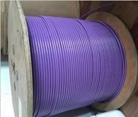 西门子Profibus电缆