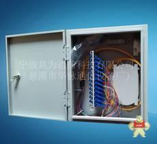TW-GPX01-VI24