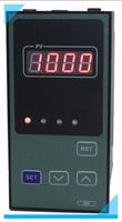 竖式单显表 ZWP-S803-01-23-HL-P