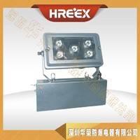 GAD605-J固态应急照明灯,GAD605-J 变电站 厂房专用应急灯 深圳华荣防爆