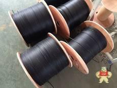 GJYXKFCH-1B6a皮线光缆