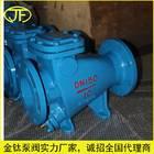 止回阀/微阻缓闭止回阀/水泵出口专用/HH44X微阻缓闭止回阀DN250