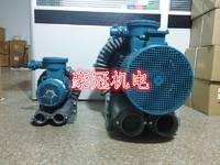 旋涡气泵台湾旋涡气泵旋涡式气泵气防爆旋涡气泵