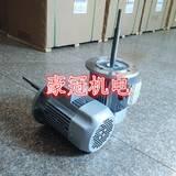 加长轴马达,加长轴电机,耐高温加长轴电机,