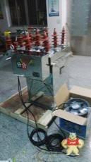 ZW8-12/630户外高压真空断路器