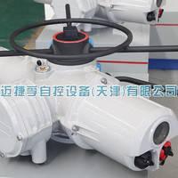罗托克系列IQ95电动执行器