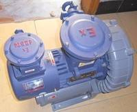 防爆旋涡气泵,防爆旋涡泵