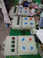 防爆照明动力配电箱  BXMD防爆照明动力配电箱非标定做