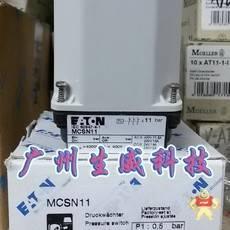 MCSN11