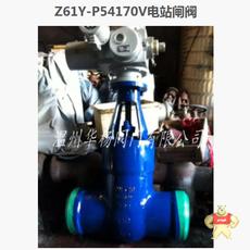 Z961Y