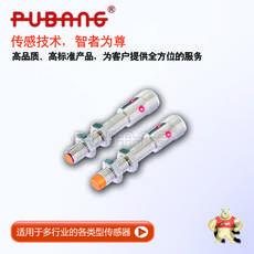 IBT8-N2/M12插头