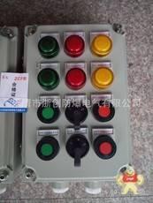 LCZ8030-A2D1K1B1