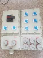 安徽BCX-12K防爆检修电源插座箱