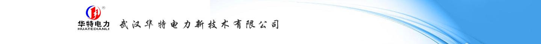 武汉华特电力新技术有限公司