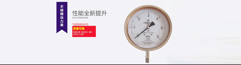 上海勇懿仪器仪表有限公司