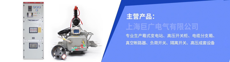上海巨广电气有限公司
