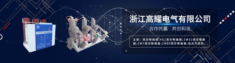 浙江高耀电气有限公司