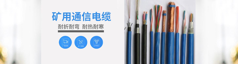 天津市第一电缆厂