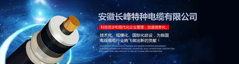 安徽长峰电缆有限公司