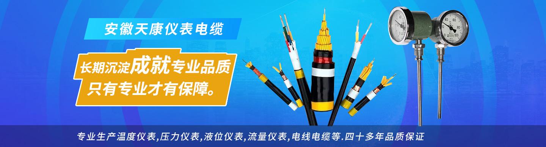 安徽天康仪表电缆专卖店