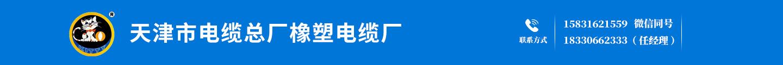 天津市电缆总厂橡塑电缆厂