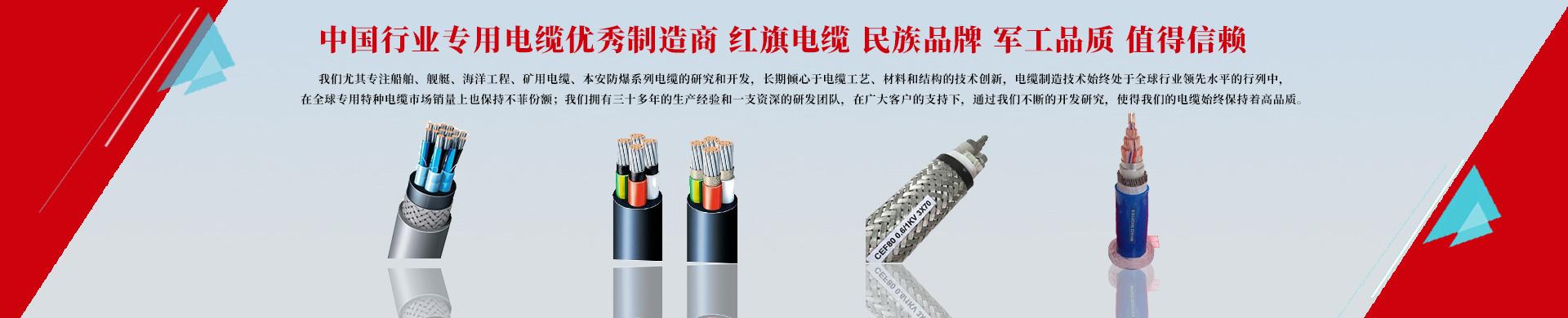 扬州市红旗电缆制造有限公司