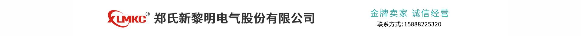 郑氏新黎明电气股份有限公司