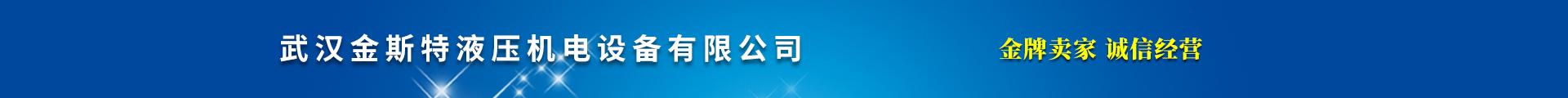 武汉恒斯源液压机电设备有限公司